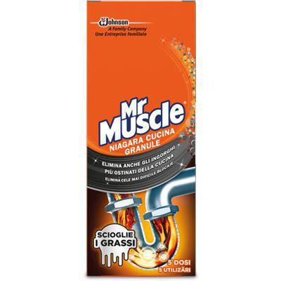 MR.MUSCLE IDRAULICO GRANULAREGR.250 NIAGARA