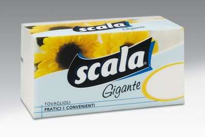 SCALA TOVAGLIOLI GIGANTE X 172